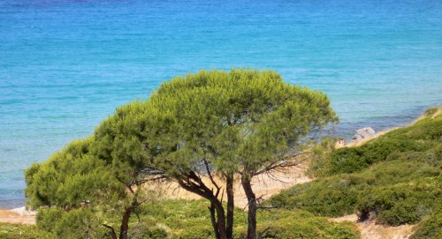 Sardinia SanTeodoro